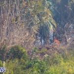Devonshire Marsh Fire Mar 17 (33)