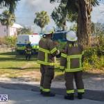 Devonshire Marsh Fire Mar 17 (34)