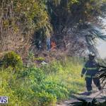 Devonshire Marsh Fire Mar 17 (35)
