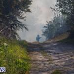 Devonshire Marsh Fire Mar 17 (36)