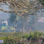 Devonshire Marsh Fire Mar 17 (41)