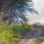 Devonshire Marsh Fire Mar 17 (42)
