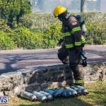 Devonshire Marsh Fire Mar 17 (46)