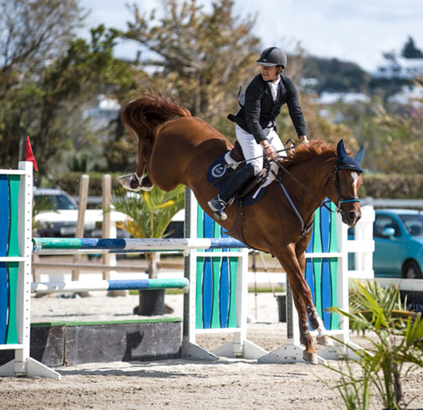 FEI World Jumping Bermuda March 12 2018 1