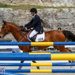 FEI World Jumping Challenge Bermuda, March 31 2018-8008