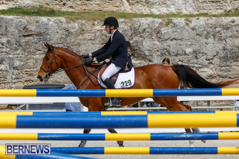 FEI-World-Jumping-Challenge-Bermuda-March-31-2018-8008