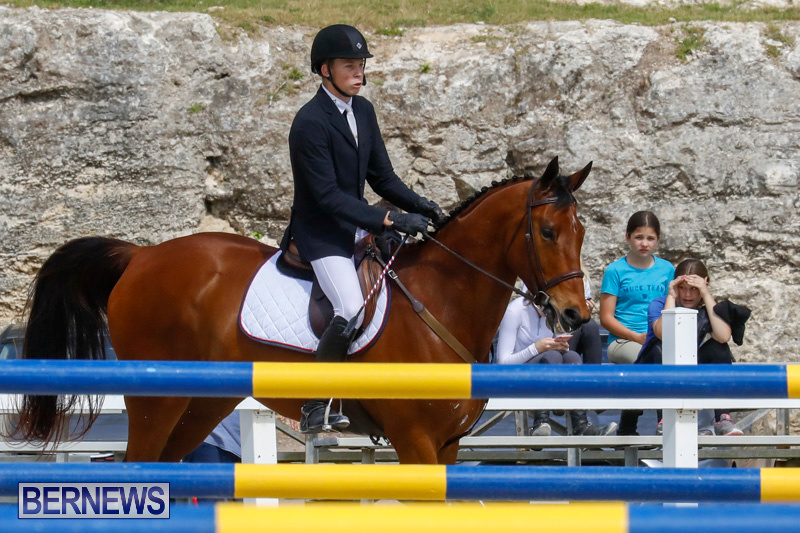 FEI-World-Jumping-Challenge-Bermuda-March-31-2018-8011