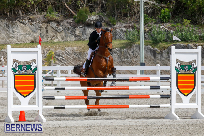 FEI-World-Jumping-Challenge-Bermuda-March-31-2018-8012