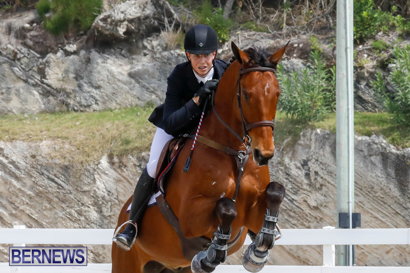 FEI-World-Jumping-Challenge-Bermuda-March-31-2018-8013