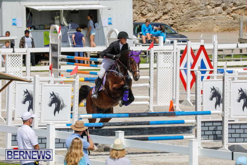 FEI-World-Jumping-Challenge-Bermuda-March-31-2018-8023