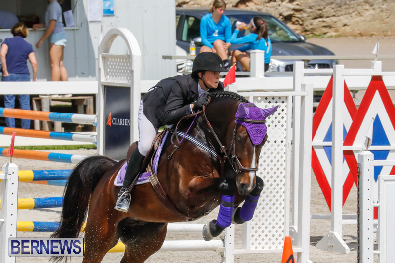 FEI-World-Jumping-Challenge-Bermuda-March-31-2018-8024