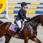 FEI World Jumping Challenge Bermuda, March 31 2018-8026