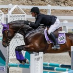 FEI World Jumping Challenge Bermuda, March 31 2018-8031