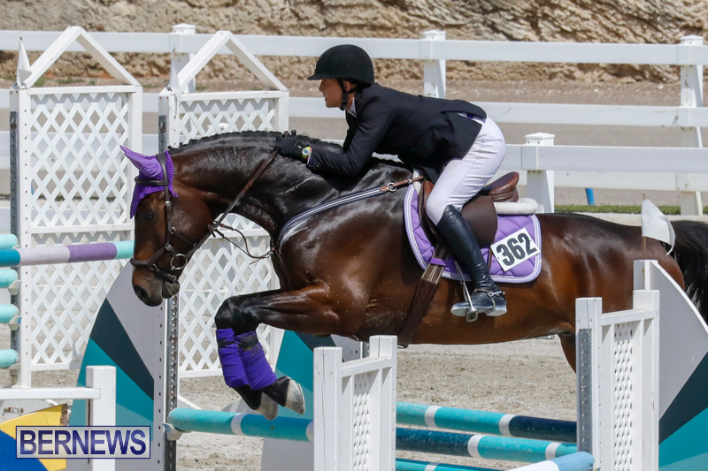 FEI-World-Jumping-Challenge-Bermuda-March-31-2018-8031
