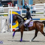 FEI World Jumping Challenge Bermuda, March 31 2018-8033