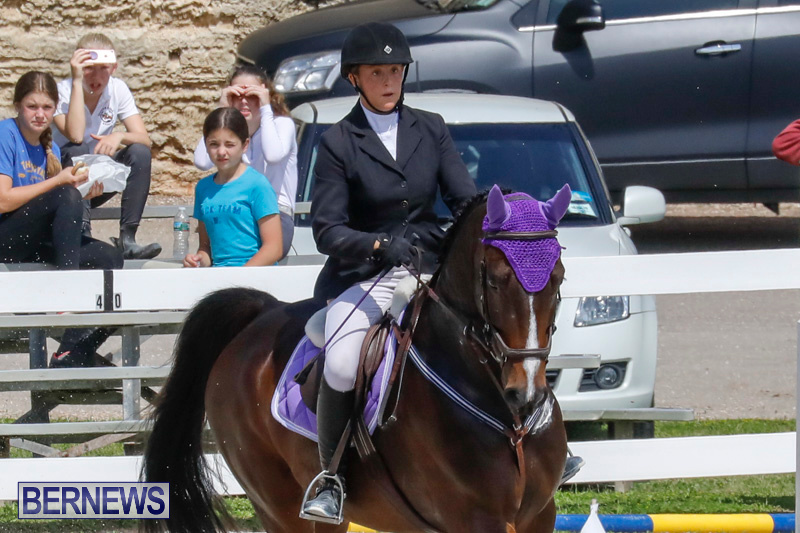 FEI-World-Jumping-Challenge-Bermuda-March-31-2018-8034