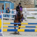 FEI World Jumping Challenge Bermuda, March 31 2018-8035