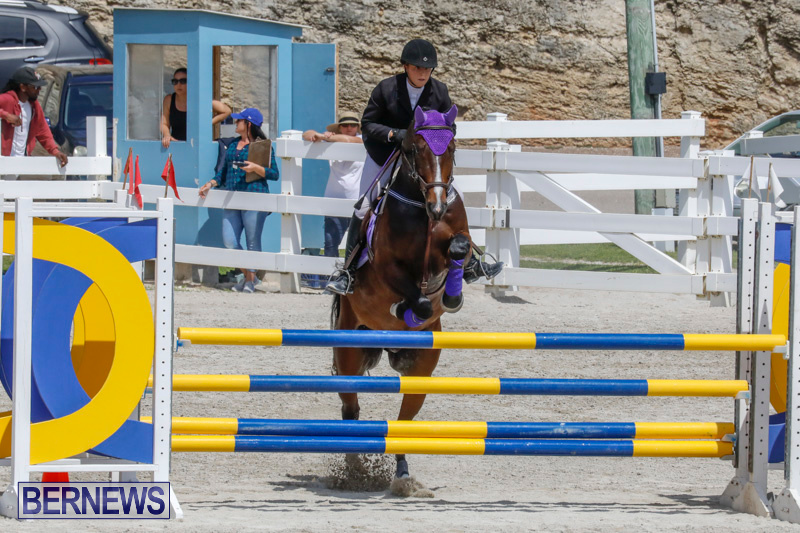 FEI-World-Jumping-Challenge-Bermuda-March-31-2018-8035