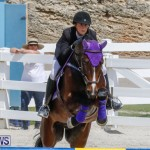 FEI World Jumping Challenge Bermuda, March 31 2018-8036