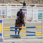 FEI World Jumping Challenge Bermuda, March 31 2018-8040