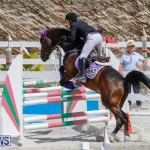 FEI World Jumping Challenge Bermuda, March 31 2018-8045