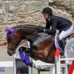 FEI World Jumping Challenge Bermuda, March 31 2018-8049