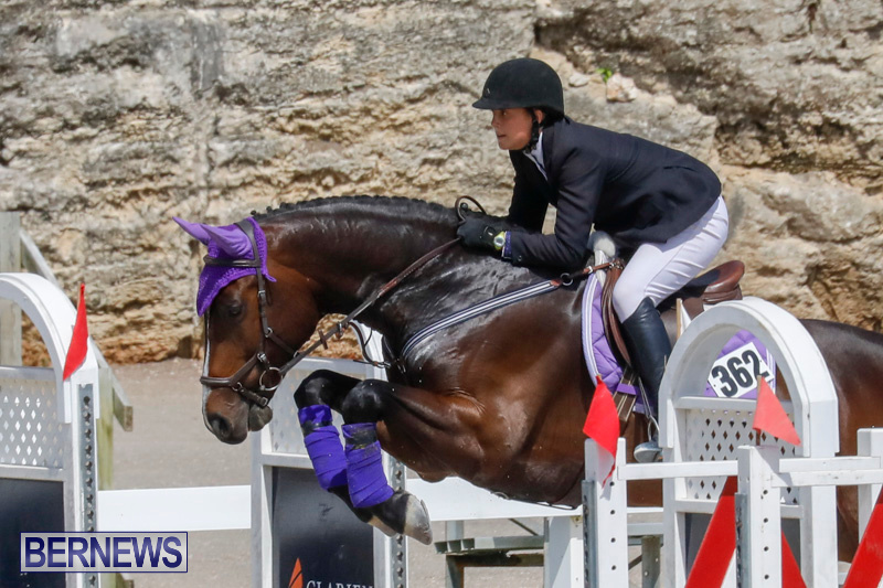 FEI-World-Jumping-Challenge-Bermuda-March-31-2018-8049