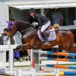 FEI World Jumping Challenge Bermuda, March 31 2018-8052