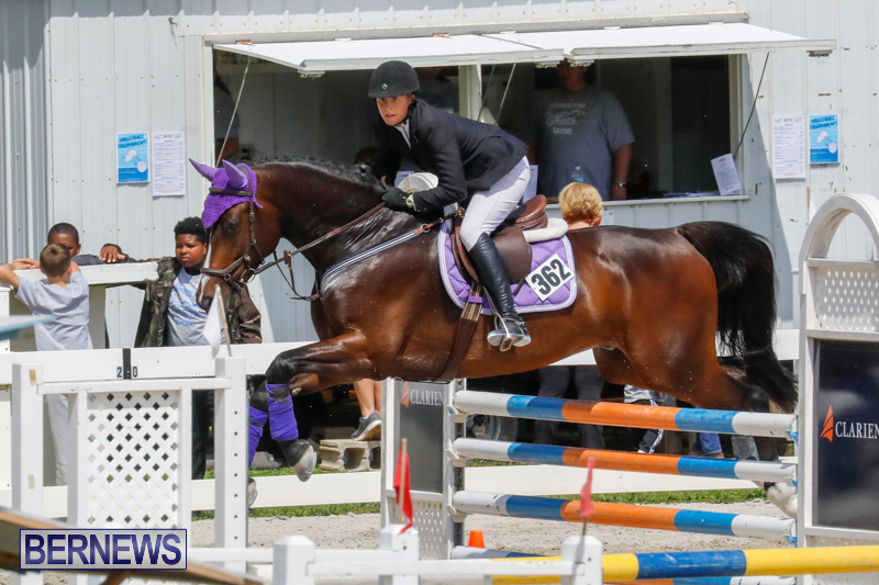 FEI-World-Jumping-Challenge-Bermuda-March-31-2018-8052