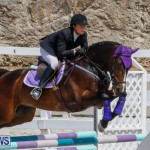 FEI World Jumping Challenge Bermuda, March 31 2018-8055