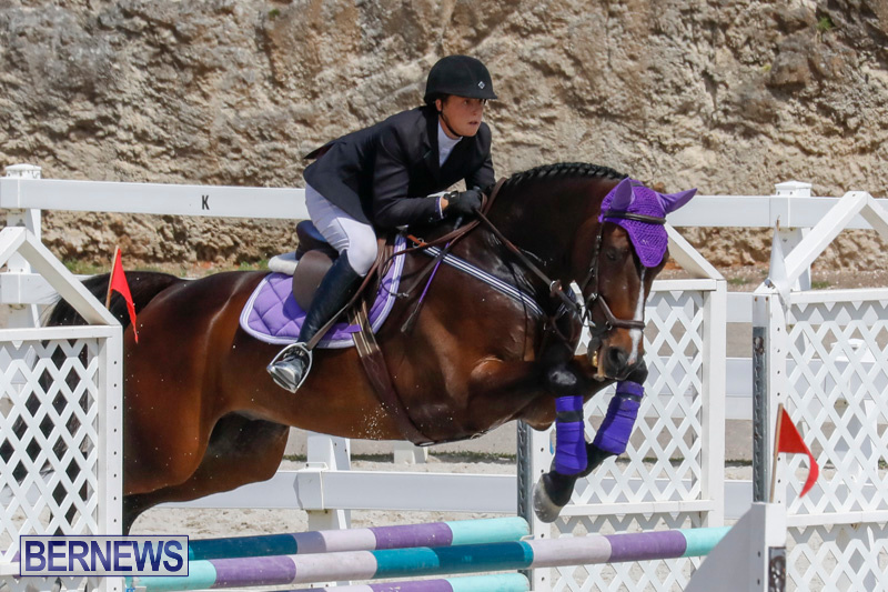 FEI-World-Jumping-Challenge-Bermuda-March-31-2018-8055