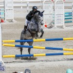 FEI World Jumping Challenge Bermuda, March 31 2018-8060