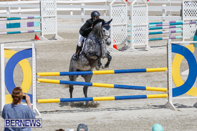 FEI-World-Jumping-Challenge-Bermuda-March-31-2018-8060