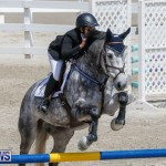 FEI World Jumping Challenge Bermuda, March 31 2018-8061