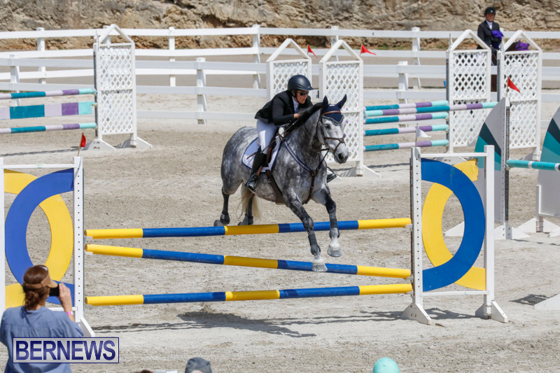 FEI-World-Jumping-Challenge-Bermuda-March-31-2018-8062