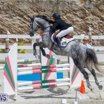 FEI World Jumping Challenge Bermuda, March 31 2018-8068