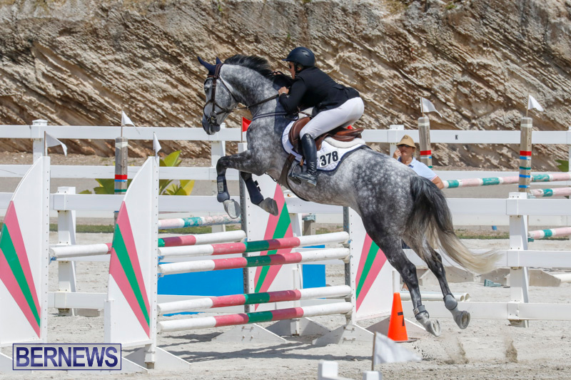 FEI-World-Jumping-Challenge-Bermuda-March-31-2018-8068