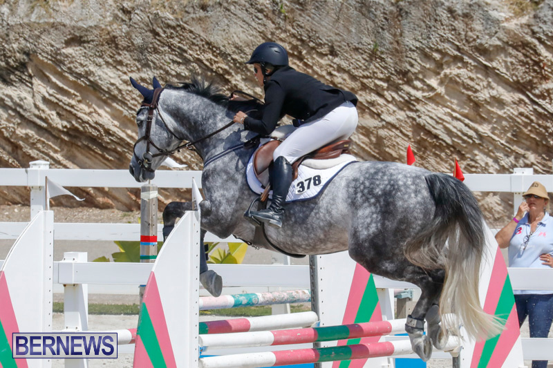 FEI-World-Jumping-Challenge-Bermuda-March-31-2018-8069