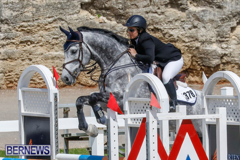 FEI-World-Jumping-Challenge-Bermuda-March-31-2018-8073