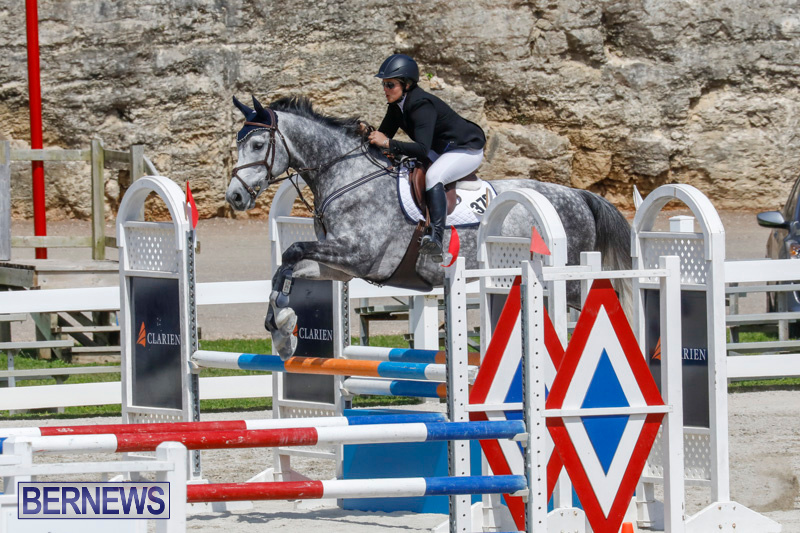 FEI-World-Jumping-Challenge-Bermuda-March-31-2018-8074