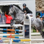 FEI World Jumping Challenge Bermuda, March 31 2018-8077