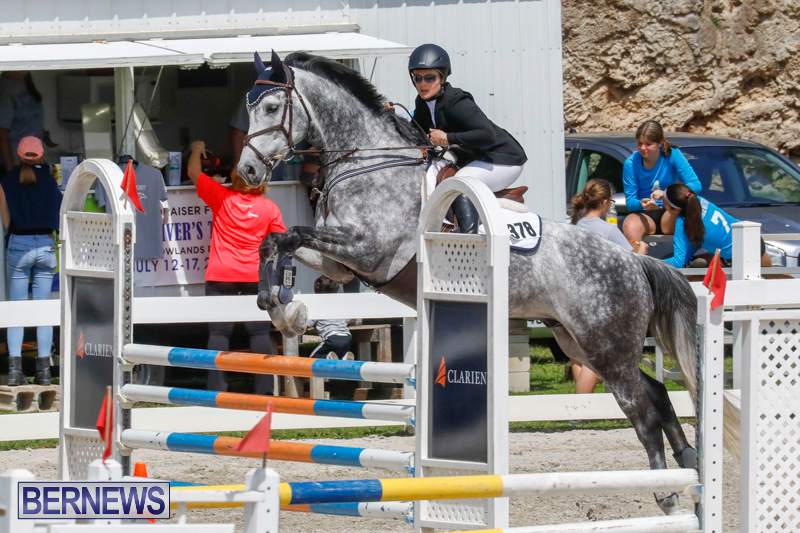 FEI-World-Jumping-Challenge-Bermuda-March-31-2018-8077