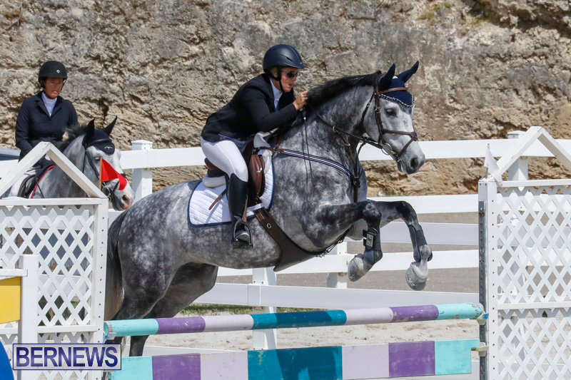 FEI-World-Jumping-Challenge-Bermuda-March-31-2018-8082