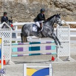 FEI World Jumping Challenge Bermuda, March 31 2018-8083