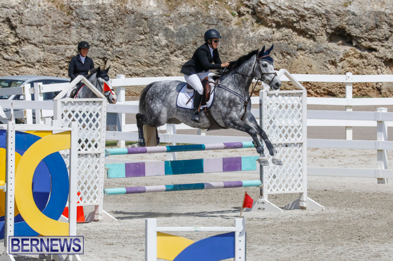 FEI-World-Jumping-Challenge-Bermuda-March-31-2018-8083