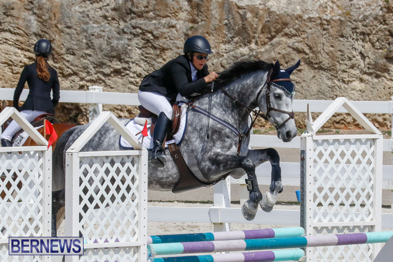 FEI-World-Jumping-Challenge-Bermuda-March-31-2018-8086