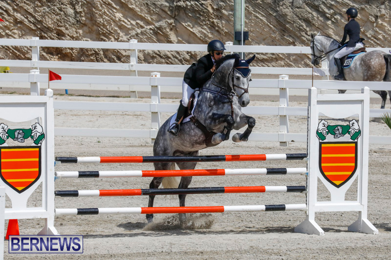 FEI-World-Jumping-Challenge-Bermuda-March-31-2018-8093