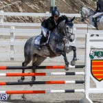 FEI World Jumping Challenge Bermuda, March 31 2018-8094