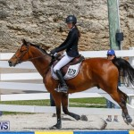 FEI World Jumping Challenge Bermuda, March 31 2018-8099