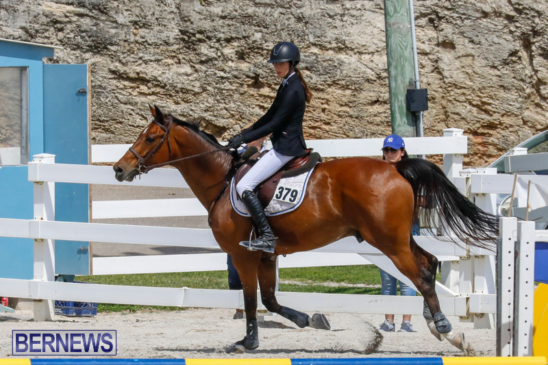 FEI-World-Jumping-Challenge-Bermuda-March-31-2018-8099